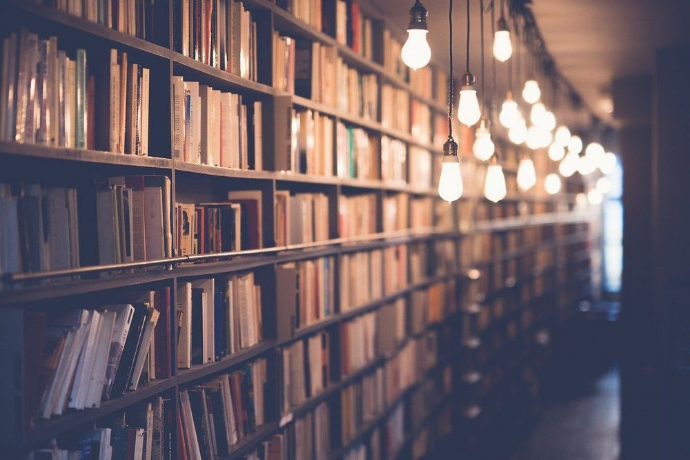Uit welke studierichtingen kun je kiezen
